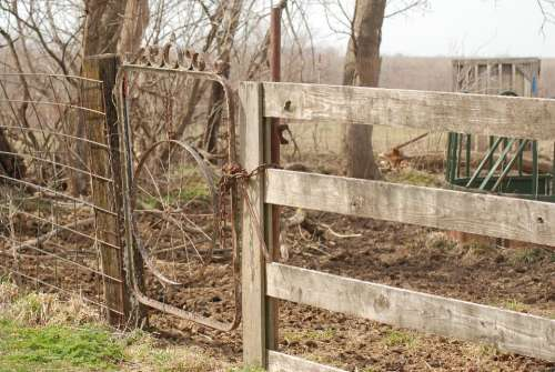 Gate Farm Fence Rural Rustic Country Wood Old