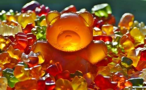 Giant Rubber Bear Gummibär Gummibärchen Gummi Bear
