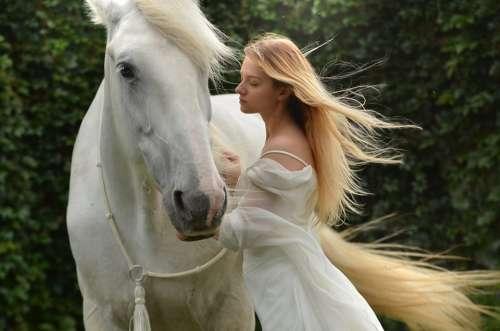 Girl Daydreaming Horse Daydream Woman Lady
