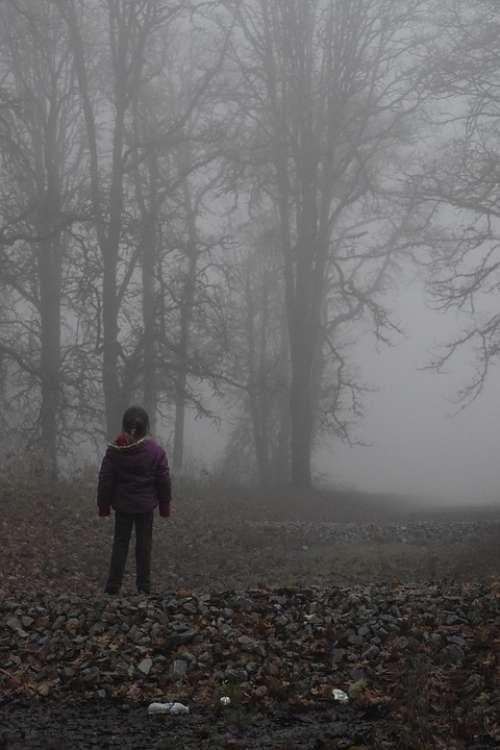 Girl Fog Hill Grass Wallpaper Background Trees