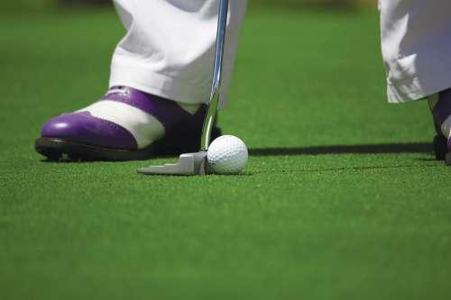Golf Golf Ball Golfing Hole Golf Course Putting