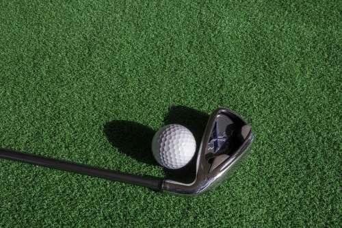 Golf Sport Ball Green Golfers Field Games