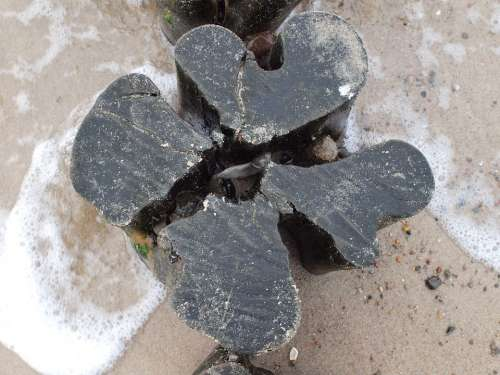 Groyne Beach Baltic Sea Split Fixing Old