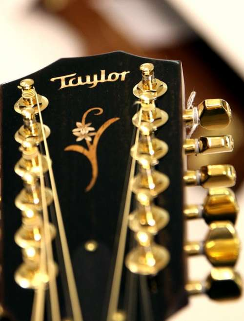 Guitar Acoustic Guitar Strings Taylor 12 String