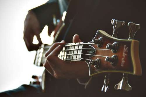 Guitarist Guitar Playing Musician Music Instrument