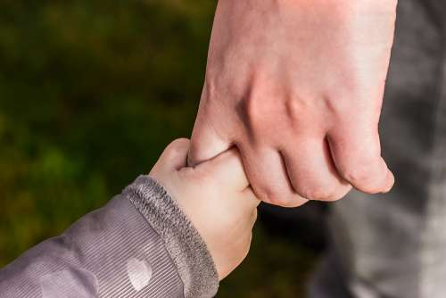 Hands Child'S Hand Hold Tight Toddler Hand