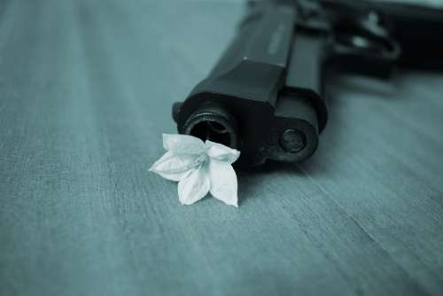 Harmony Peace Pistol War