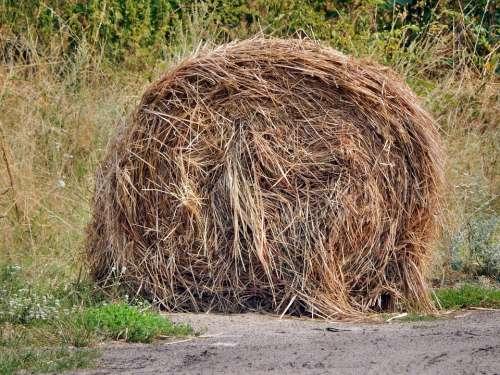Hay Rick Haystack Haymaking Harvest