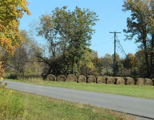 Hay Bale Hay Bales Straw Field Agriculture