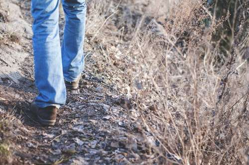 Hiking Nature Walking Trails Jeans Walking Shoes