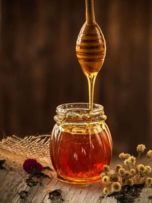 Honey Yellow Beekeeper Nature Beekeeping Apiary