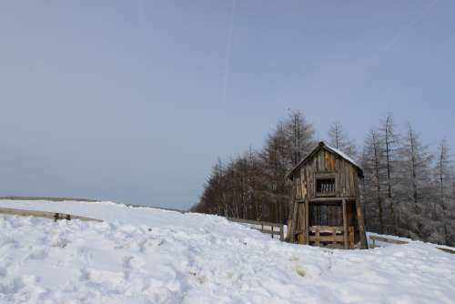 Hut Snow Winter Scenery Nature Cattle Ranch