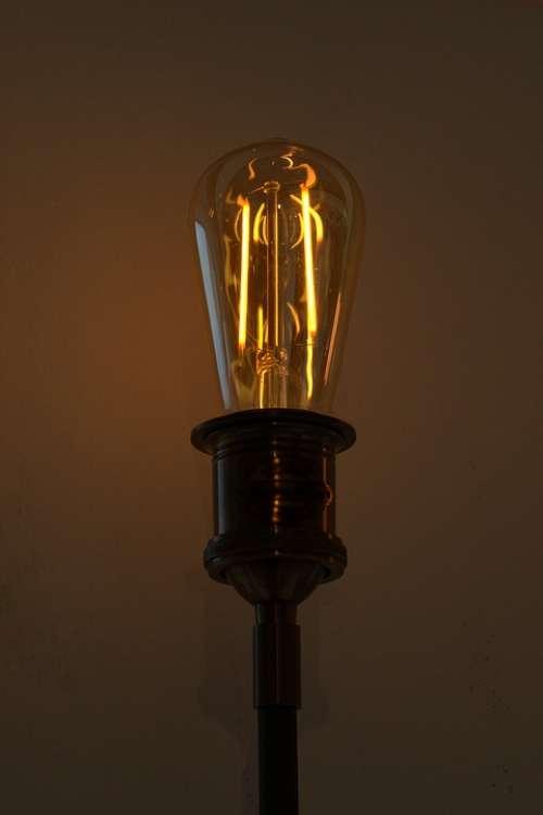 Idea Pear Light Bulb Energy Current Electric