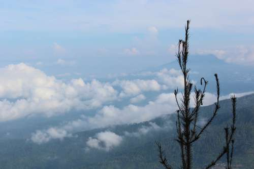 Indonesian Mount Nature Air