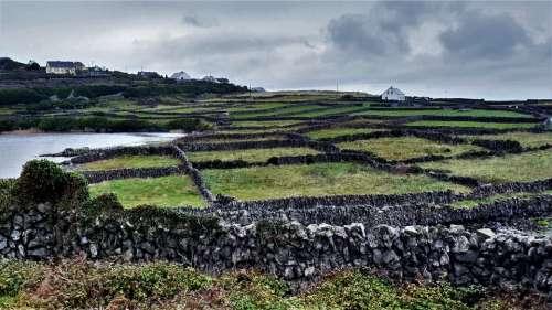 Ireland Stone Walls Meadow Fields Field Nature
