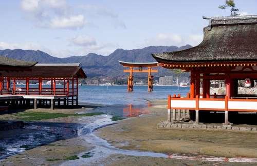 Japan Torii Sanctuary Temple Miyajima