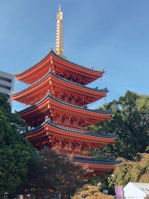 Japan Fukuoka Total 岡 The Company Tochoji Temple