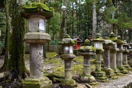 Japan Nara Stone Lantern Moss Shrine