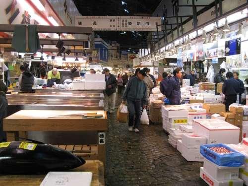 Japan Tokyo Fish Market Tsukiji Tourist