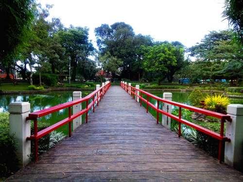 Japanese Garden Park Landscape Japanese Garden