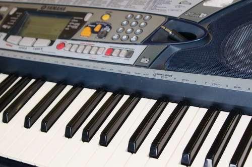 Keyboard Musical Instrument Piano Epiano Band