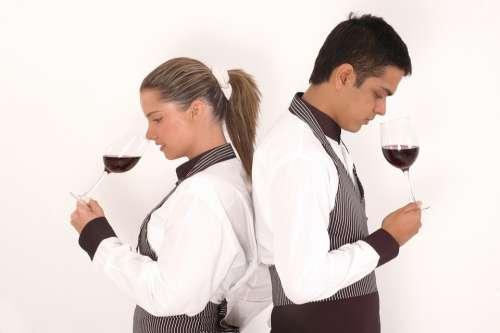 Kitchen Waiter Bottle Wine Drink Bar