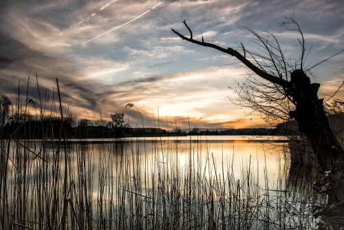 Lake Landscape Nature Water Sunset Rest