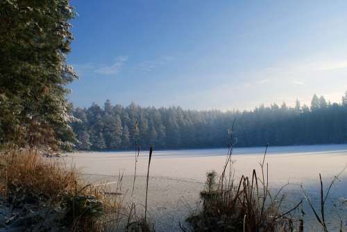 Lake Winter Forest Landscape