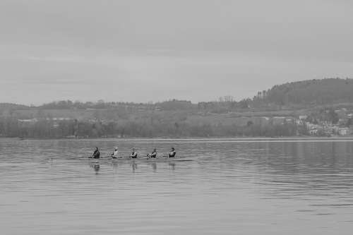 Lake Constance Rowing Rowing Boat Canoeing Nature