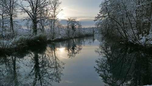 Landscape Nature River Limmat Trees Sun Morning