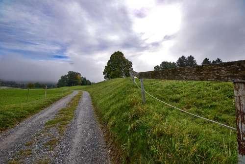 Landscape Meadow Rural Road