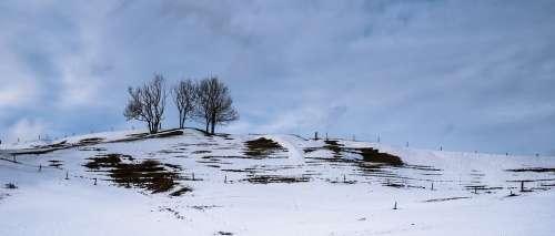 Landscape Snow Landscape Snow Melt Wintry Winter
