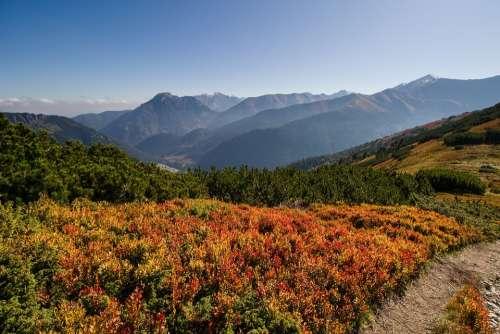 Landscape Mountains Colorful Autumn Misty