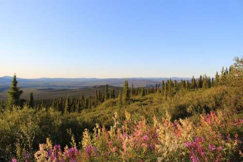 Landscape Dempster Highway Eagle Plains Yukon