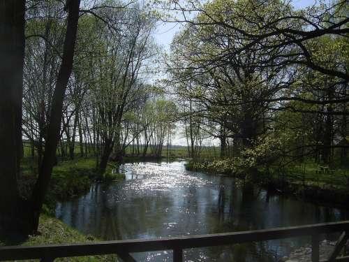 Landscape Water River Nature Bridge