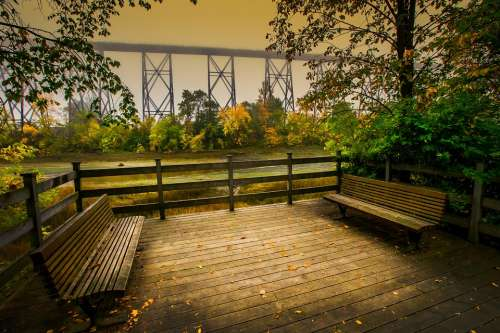 Landscape Fall Trees Nature Foliage Warm Shades