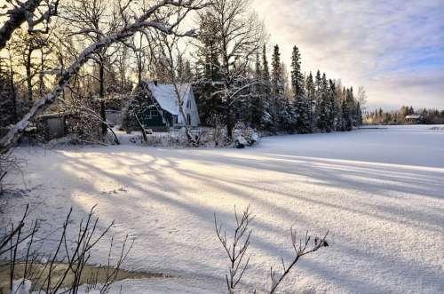 Landscape Winter Snow Ice Trees Nature