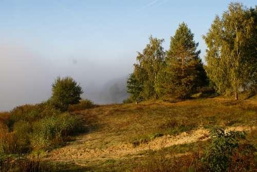 Landscape Morning Mood Rest Fog