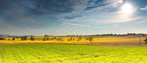 Landscape Summer Fields Meadow Nature