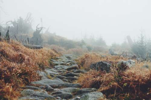 Landscape Path Way Hiking Trekking Nature Outdoor