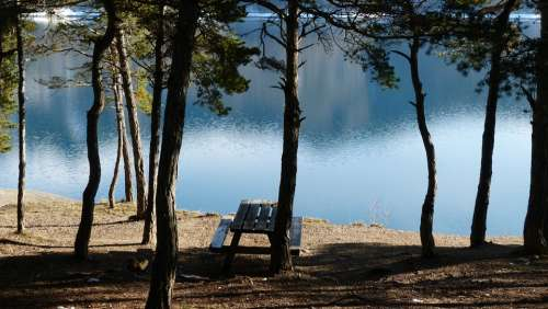 Landscapes Nature Water Lake Trees Light And Shade
