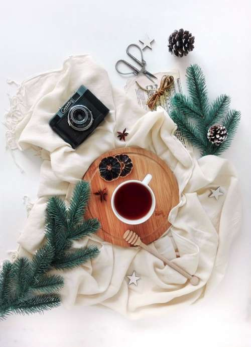 Layout Tea Tea Party Spruce Branch Camera