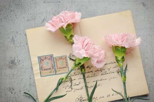 Letters Envelope Old Antique Post Labeled Paper