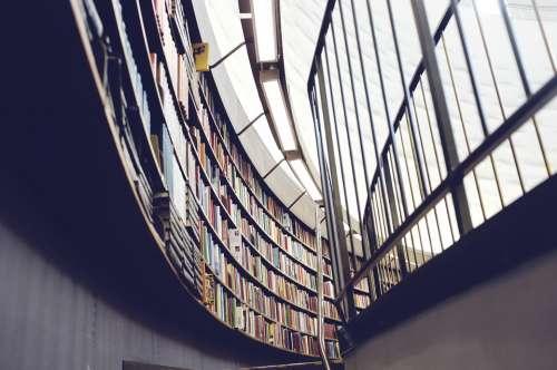 Library Books Bookshelf Education Literature