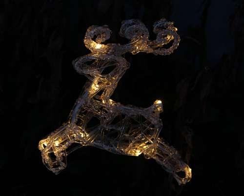 Lichterkette Reindeer Christmas Decoration