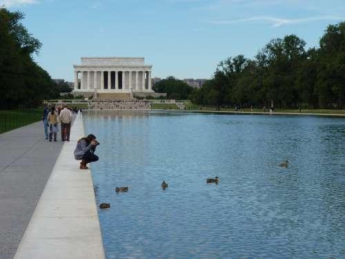 Lincoln Photograph Ducks Water Washington Pond