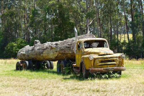 Log Truck Wreck Logging Truck Log Timber