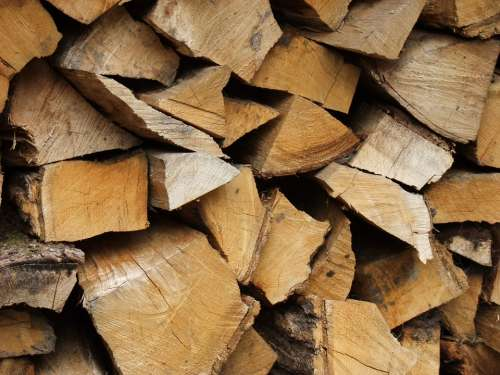 Logs Wood Rough Pattern Material Wooden Trees