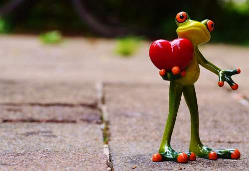 Love Valentine'S Day Pose Heart Funny Frog Animal