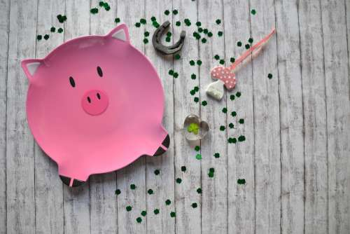 Lucky Pig Luck Piglet Lucky Charm Cute